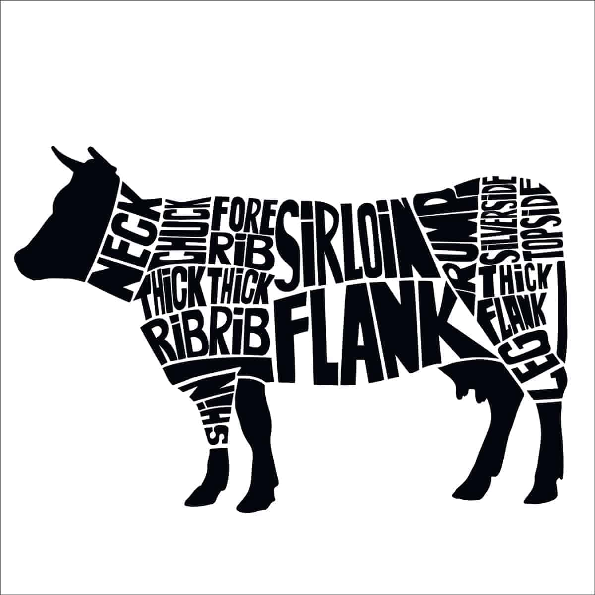 illustrated cow showing where cuts of meat come from on its body