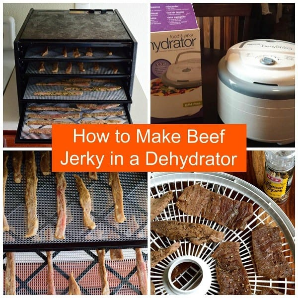 How Long To Make Jerky In Food Dehydrator
