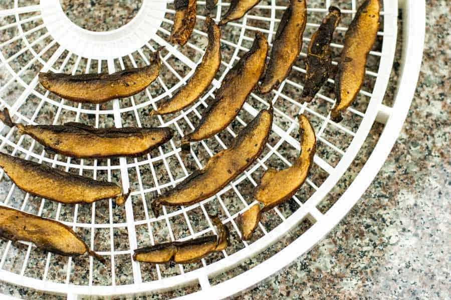 sliced mushrooms on tray of dehydrator on table