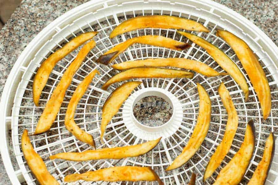 Eggplant Jerky on dehydrator tray