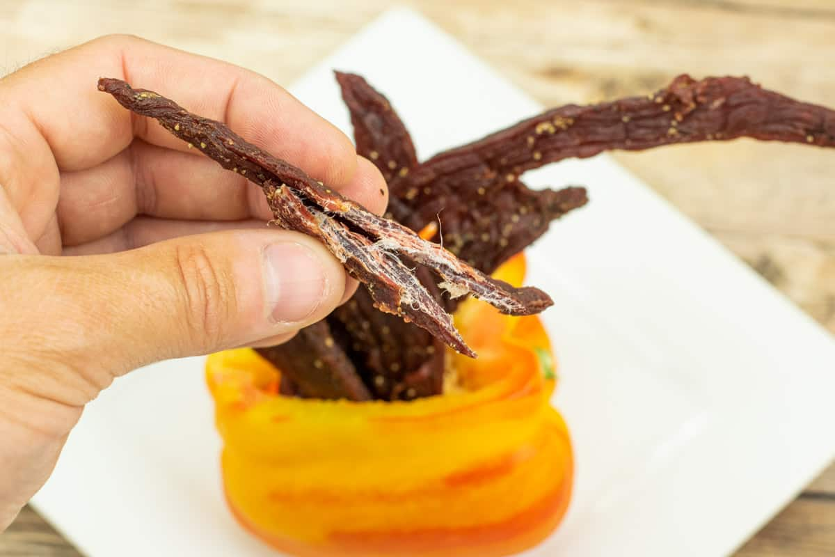 Tangy beef jerky bent in half showing white fibers and that it is finished drying